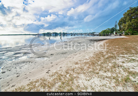 beach at yamba stock photo, yamba nsw with pelicans at the river beach by Phil Morley