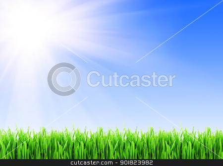 Green grass stock photo, Fresh green grass under blue sky by Alexey Popov