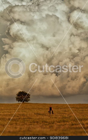 Lonely tree in the clouds. stock photo, A man goes to a tree standing alone. In the background is a huge cloud. by fogen