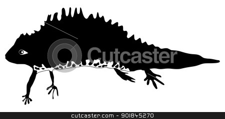 newt stock vector clipart, silhouette of newt by Oleksandr Kovalenko