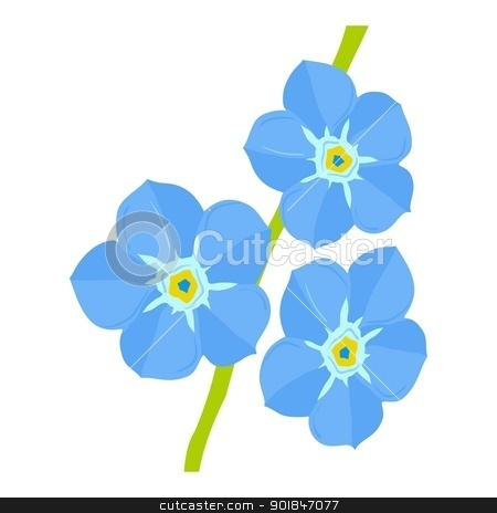 forget-me-not stock vector clipart, Illustration of forget-me-not by Oleksandr Kovalenko