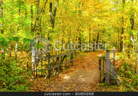 Autumn Path to a Bridge stock photo, A path passes over a bridge at Banning State Park, Minnesota. by Ken Wolter