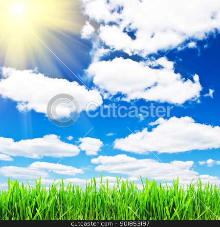 Spring background stock photo, Spring grass under blue cloudy sky by Alexey Popov