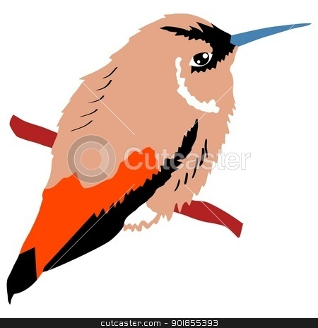 Illustration of hummingbird stock vector clipart, Illustration of hummingbird by Oleksandr Kovalenko