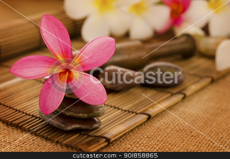 Tropical spa stock photo, Tropical spa with Frangipani flowers. Low lighting, suitable for spa related theme. by szefei