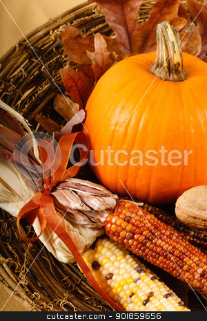 Fall Decorations With Pumpkin And Indian Corn stock photo, A colorful orange pumpkin is nestled in Indian Corn for a traditional Fall or Thanksgiving decoration by Karen Sarraga