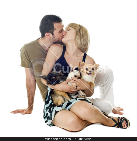 lovers and dogs stock photo, Romantic young couple with chihuahuas in front of white background by Bonzami Emmanuelle