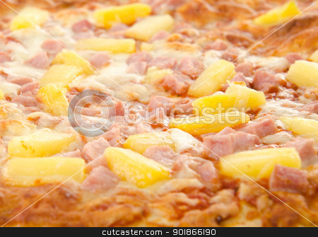 Cooked Hawaiian Pizza stock photo, Closeup of a cooked hawaiian pizza with pineapple and ham. by Richard Nelson