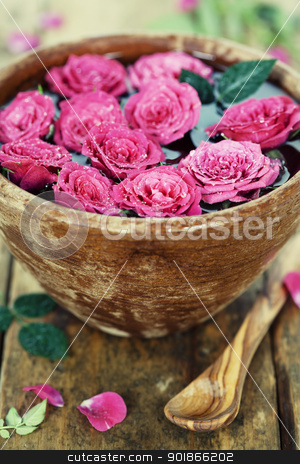 pink roses stock photo, Close up of Beautiful pink roses in bowl over white by klenova