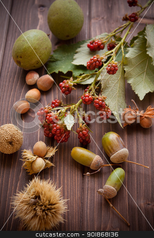 Soft fruits stock photo, Soft fruit, raspberries nuts and acorn on dark wood by Giordano Aita