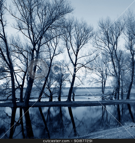 Mirror stock photo, Tree reflections on the water surface. Photo taken in the Elbe Valley, a nature reserve on the Elbe. by Bastian Kienitz