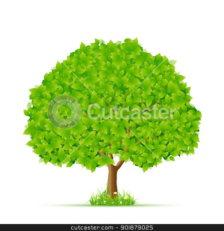 Isolated Green Tree with Grass and Flowers stock vector clipart, Isolated Green Tree with Grass and Flowers for your design by Vadym Nechyporenko