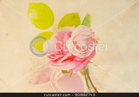 Pretty floral vintage background with pink rose stock photo, Pretty floral vintage background with pink rose by Juliet Photography