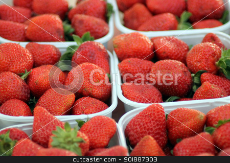 Punnets of strawberries stock photo, Punnets of ripe red strawberries on market stall. by Martin Crowdy