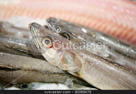 fresh fish stock photo, fresh fish by photography33