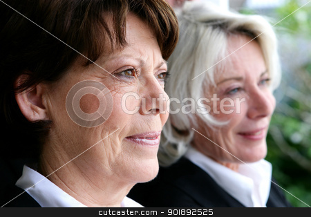 two mature businesswomen posing together stock photo, two mature businesswomen posing together by photography33
