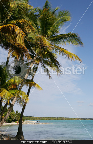 Perfect island stock photo, Perfect island by photography33