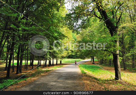 Walking in autumn forest stock photo, Autumn forest road with woman and dog walking in distance by zagart