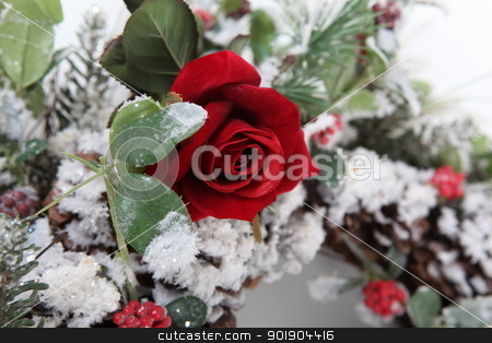 Flower arrangement stock photo, Flower arrangement by photography33