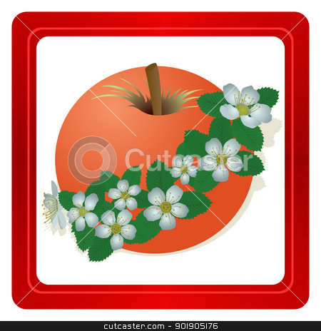 Red Apple stock vector clipart, Apple and apple flowers. The illustration on a white background. by Sergey Skryl