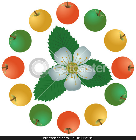 Apples and flowers stock vector clipart, Apples and apple blossom. The illustration on a white background by Sergey Skryl