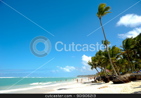 Beach stock photo, Palm hanging over exotic caribbean beach with the coast in the background. by Lars Christensen