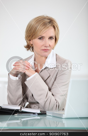 Businesswoman sitting at her laptop with an open diary stock photo, Businesswoman sitting at her laptop with an open diary by photography33