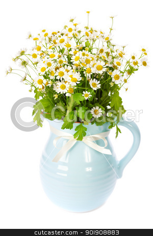 flowers in a vase  stock photo, Beautiful flowers in a vase on white background  by klenova