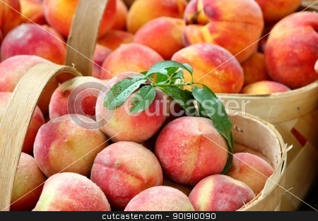 Baskets of peaches 2 stock photo, Close up of fresh, ripe peaches with green leaves attached by Cathy Locklear
