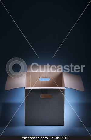 Empty Cardboard Box stock photo, Empty Cardboard Box on the blue background by eskaylim
