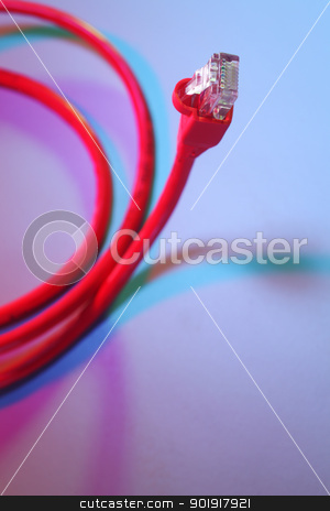 cable stock photo, close up of the network cable by eskaylim