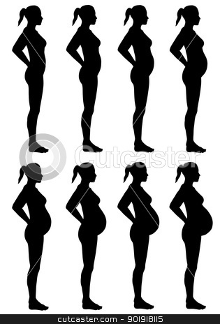 Female Silhouette Stages of Pregnancy stock photo, A side view illustration of 8 female silhouette's in different stages of pregnancy.  Isolated on a solid white background. by Randall Reed