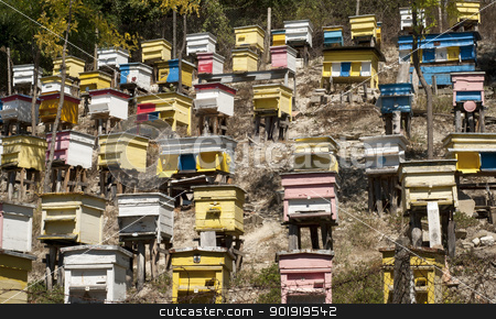 Beehives on slope stock photo, Wooden colored beehives on mountain forest slope by Aleksandar Varbenov