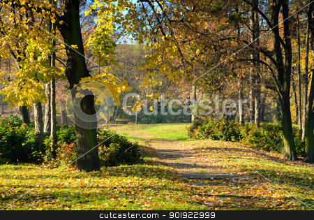 Autumn in Park stock photo, Walking path through  park in early autumn morning with fall color leaves by zagart