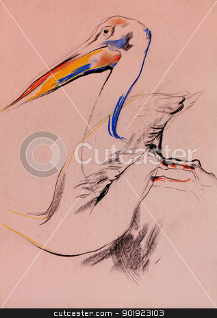 Pelican sketch stock photo, Old,grunge original pastel and  hand drawn sketch of a pelican (disambiguation).Free composition by borojoint