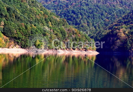 mountain lake stock photo, reflections of the forest in a wild mountain lake in Apuseni mountains by coroiu octavian