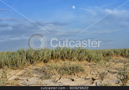 Arid landscape with cracked mud stock photo, Arid landscape with cracked mud and sparse tufted grass conceptual of climatic change and drought due to global warming by ekipaj
