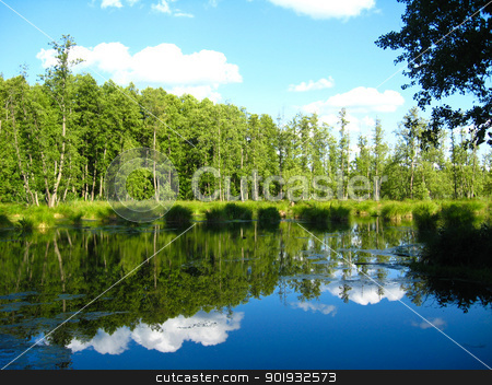 Picturesque lake with the reflected sky stock photo, the beautiful summer landscape with picturesque lake by Alexander Matvienko