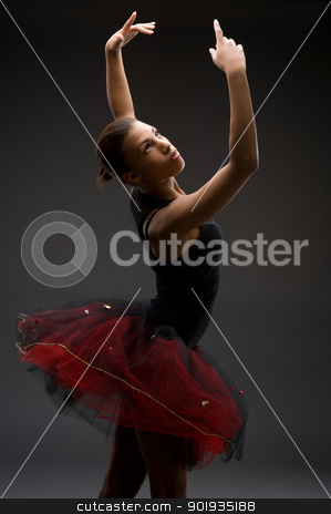 Classical Ballerina stock photo, Studio picture from a classical ballerina by Picturehunter