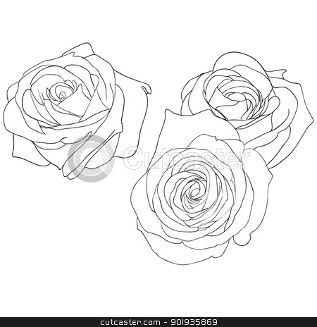floral design element and hand-drawn ,  illustration stock photo, floral design element and hand-drawn ,  illustration by aarrows