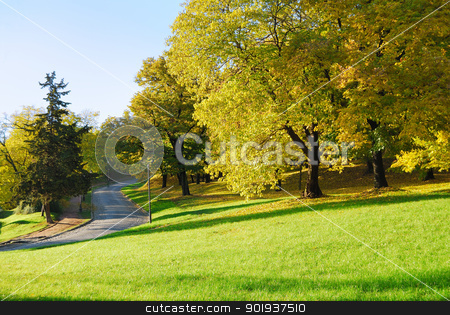 Autumn Morning in Park stock photo, Autumn Morning Light in Park with Walking Path and Fall Maple Trees by zagart