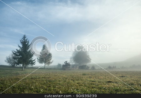 misty scenery stock photo, An image of a nice misty scenery by Markus Gann
