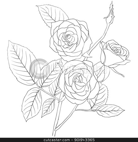 Rose Bouquet Drawing Hand Drawing Illustration of a
