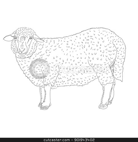 sheep painted by hand  stock vector clipart, sheep painted by hand vector illustration by aarrows
