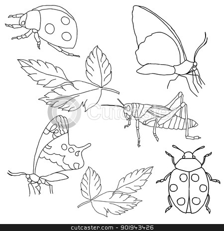 Set of insects on a white background. stock vector clipart, Set of insects on a white background. by aarrows