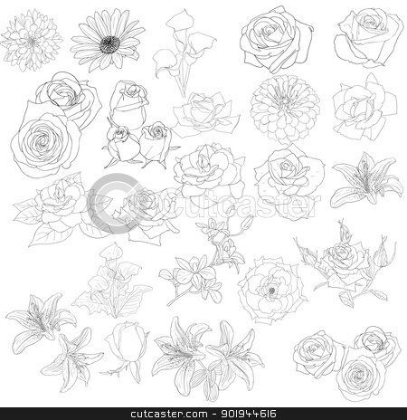 Set of  in hand drawn style roses stock vector clipart, Set of  in hand drawn style roses. Vector EPS 10 illustration. by aarrows