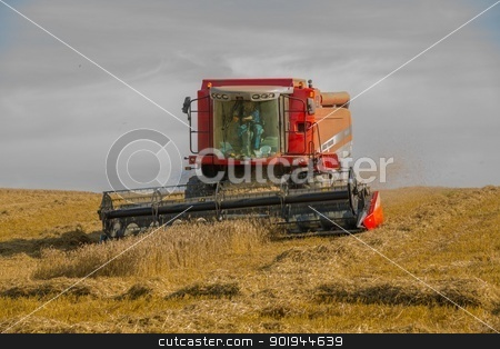 Beating the Weather 2 stock photo, Farmer and Combined Harvester processing a wheat field in West Somerset, England. by Trevor Jordan