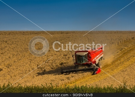 Beating the Weathe 6 stock photo, Farmer and Combined Harvester processing a wheat field in West Somerset, England. by Trevor Jordan