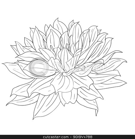floral design element and hand-drawn , vector illustration stock vector clipart, floral design element and hand-drawn , vector illustration by aarrows