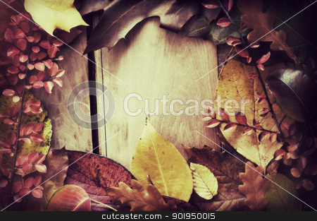 Autumn Border stock photo, Autumn Background - Color Autumn Leafs on Wooden Background - Vintage Look by JAMDesign